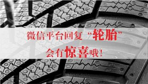 轮胎最宽的轿车图片_轿车轮胎型号 轿车轮胎规格、参数详细解释 - 三奇网